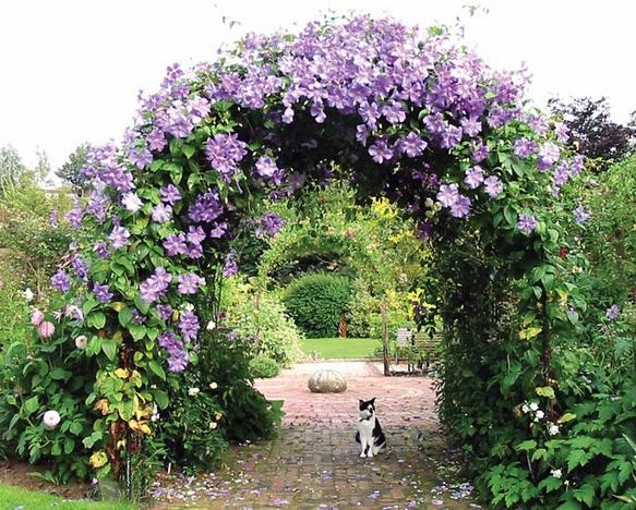 Строим оригинальную садовую арку самостоятельно