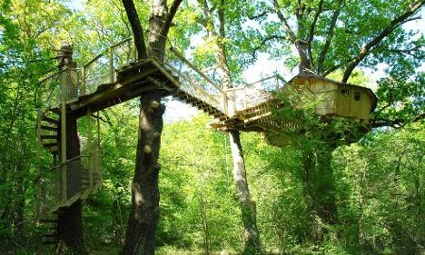 Дом между несколькими деревьями