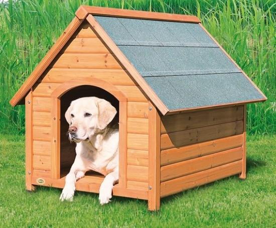 Сделайте будку для своего верного пса, не напрягаясь!