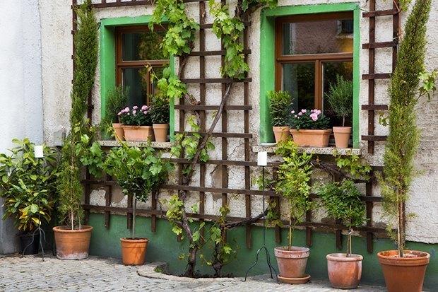 Решетка для цветов на даче