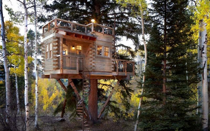 Домик на дереве для взрослых