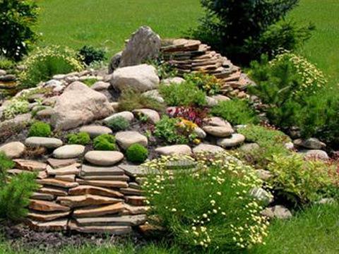 Альпинарий в виде сада камней