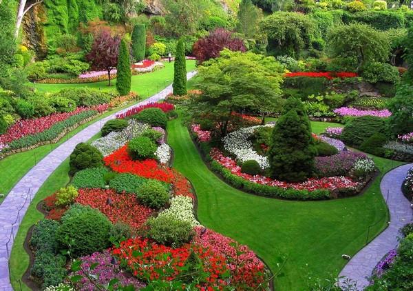 Миксбордер на даче – удивите соседей эксклюзивным цветником