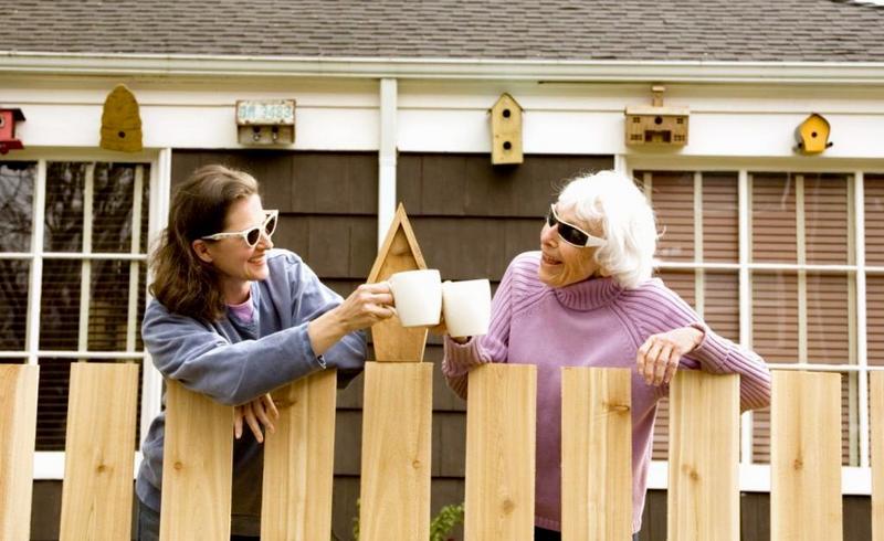 дружные соседи